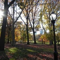 Central Park Light