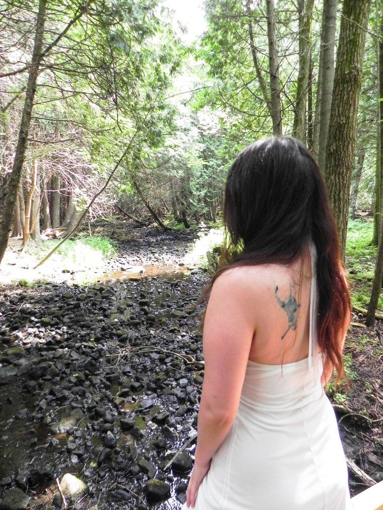 TerreBleu_Forest_back (1 of 1)